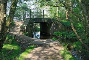 hampshire county council considers future of holmsley bridge in the new forest
