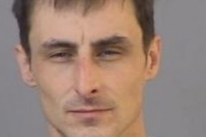 notorious new forest burglar sentenced to four years