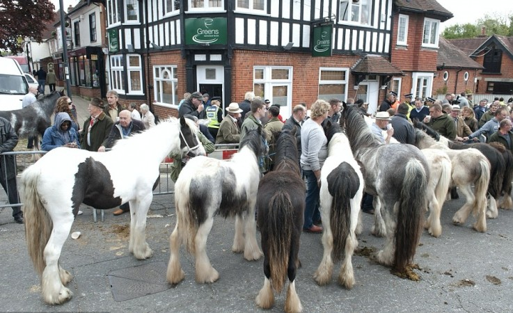 Police Warn Of Possible Traffic Disruption In Wickham During Horse Fair