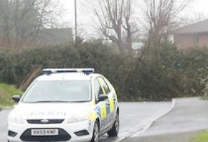 police hunt man after sex attack in waterlooville