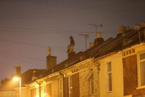 man holds police to ransom in rooftop stand off in portsmouth