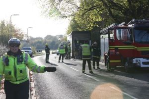 fifteen fire fighters and a traffic warden rescue horse stuck in gosport