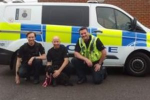 dog found safe and well after public give police a number of leads