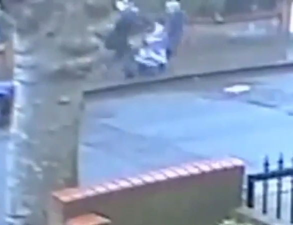 A Woman With Toddler In Buggy Violently Robbed In Broad Daylight
