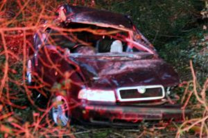 driver escapes life changing injuries after car ploughs into tree on beeper shute