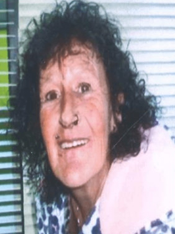 concern for missing bournemouth woman gillian greenwood