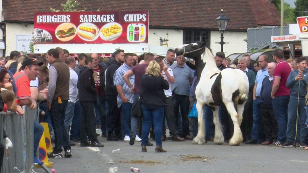 all fun and fights at the wickham horse fair 2017