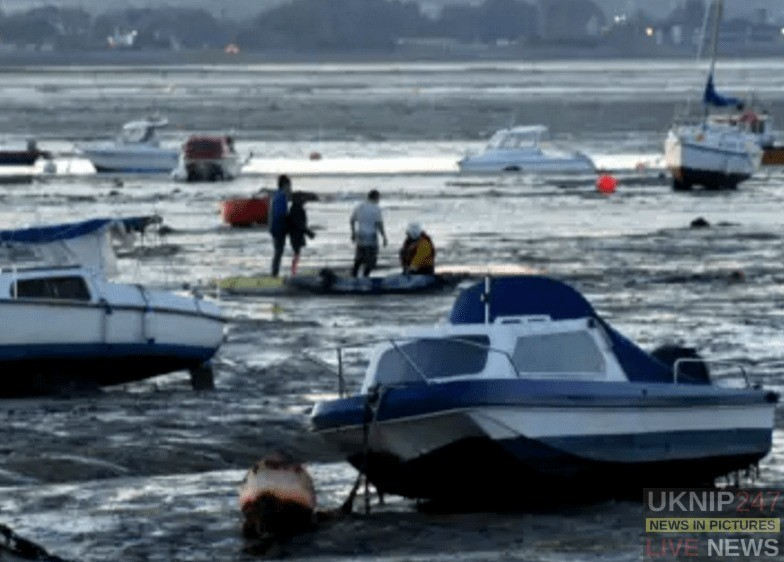 family rescued from langstone harbour mud flaps by kayaks and the rnli