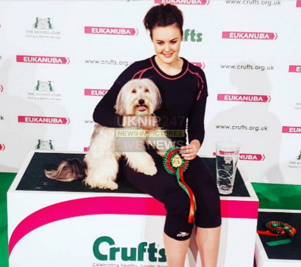 britain got talent pudsey the dog has died