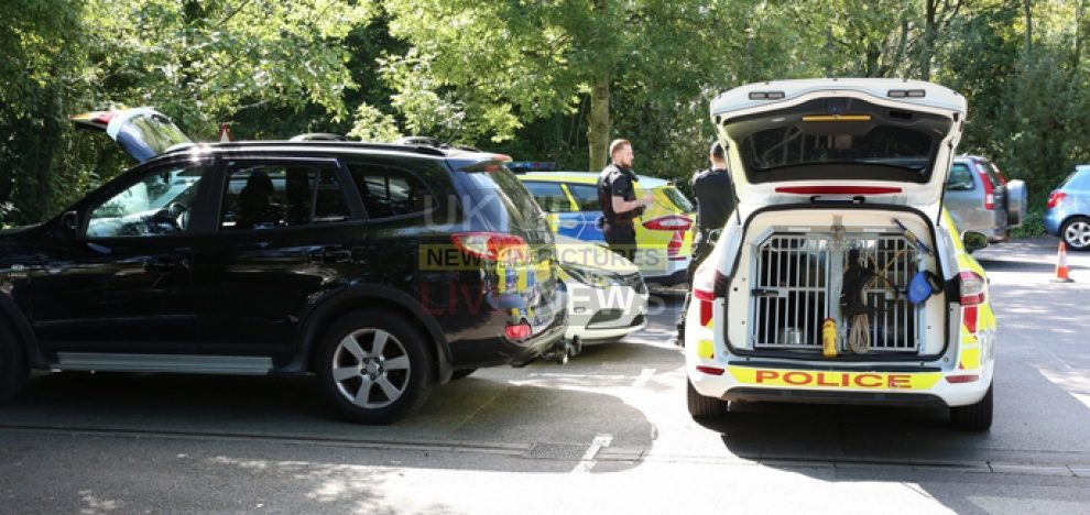 missing southampton womans car found abandon in hedge retail park