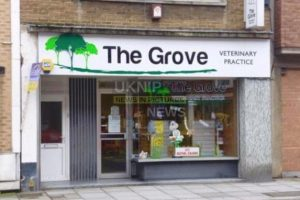 vet practice latest victim in crimewave to hit southsea