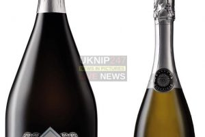 aldi bring christmas cheer to prosecco lovers with three litre bottle