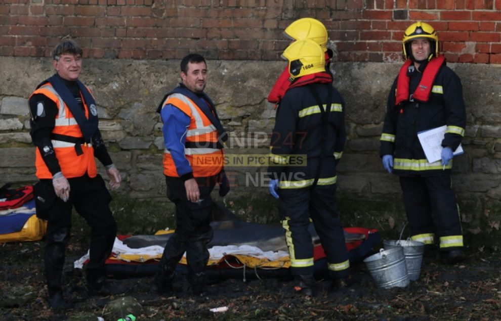 major rescue operation by emergency services to free trapped dolphin in fareham