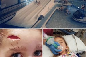 family holiday at butlins turns into a real life nightmare as child is rushed to hospital with head injury