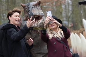 celbs pack world of dinosaurs opening ceremony at paradise wildlife park