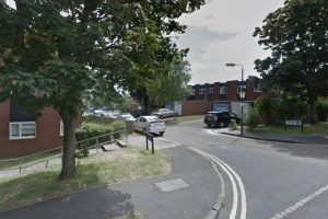 woman dies in pinner flat fire