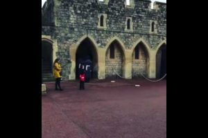 youngster gets impromptu snap with windsor guardsman