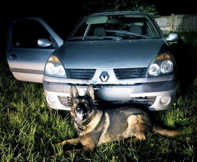 two travelling thieves make friend with a kent police dog