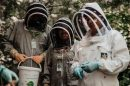 asda help to keep isle of wight bees buzzing