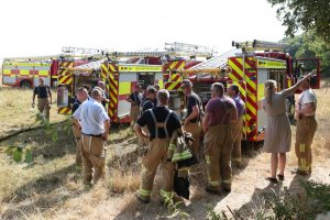 discarded disposable barbecue caused fire in old park hotel woods in ventnor