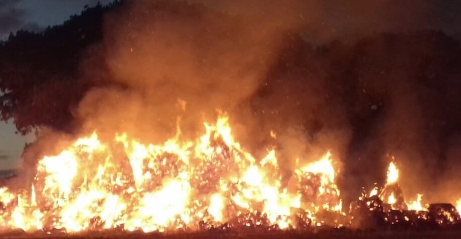 fifty fire fighters called to large grass fire in the new forest