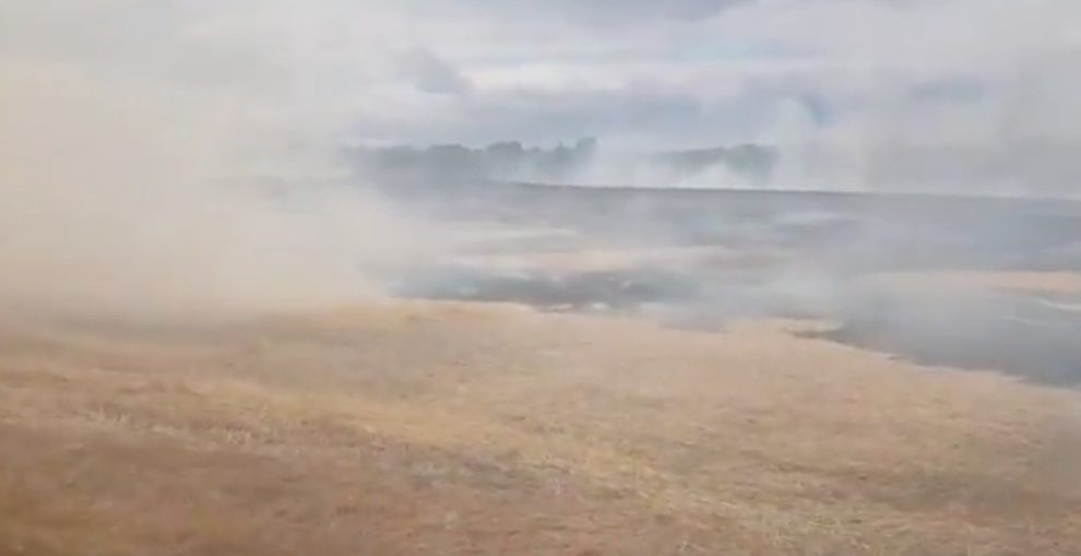fire crews called to corn field well alight in west malling