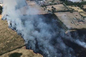 london fire crews tackling a fire the size of 4 football pitches and fourteen horses rescued