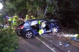 pensioner seriously ill after car ploughed into tree