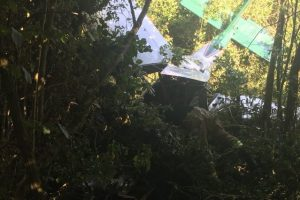 two escape serious injury in plane crash in hampshire