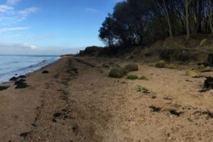 woman found by dog walking pair on east cowes beach is very lucky