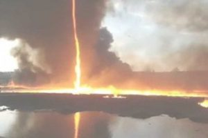 fire fighters witness a firenado whilst tackling a blazing inferno