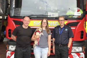missing pup reunited with owner in ryde