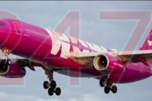 wow air ceased operations leaving thousands stranded