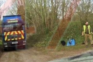 manhunt for rogue traders