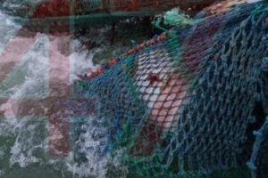 2000lb sea mine mistakenly dredged up by fishing boat off the isle of wight has been destroyed