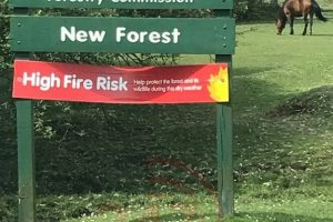 joint warning issued over elevated risk level of fires in the new forest