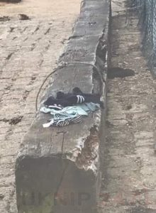 Abandon Clothing Sparked Sea And Land Search In Gosport
