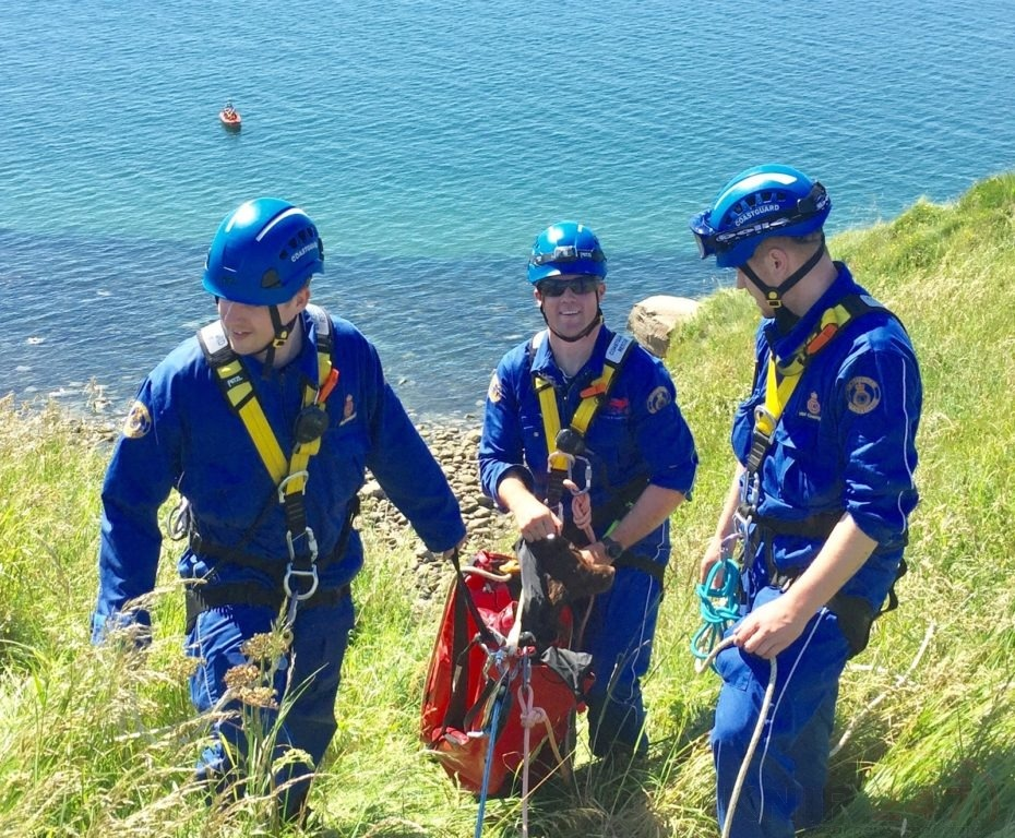 lucky escape for dog who fell 25m off a cumbrian cliff