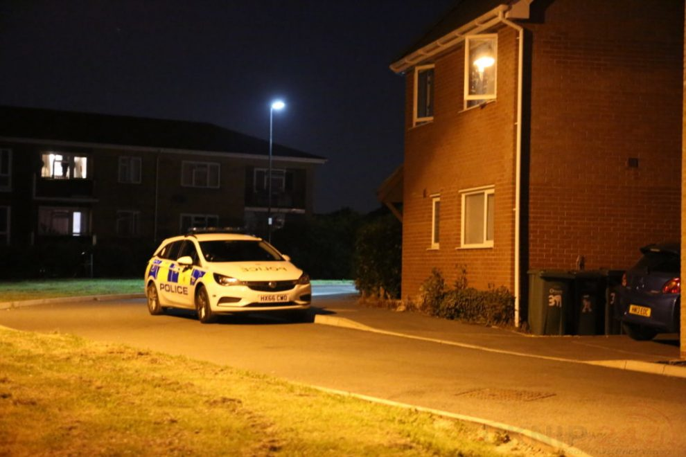 police descended on to pan meadows estate