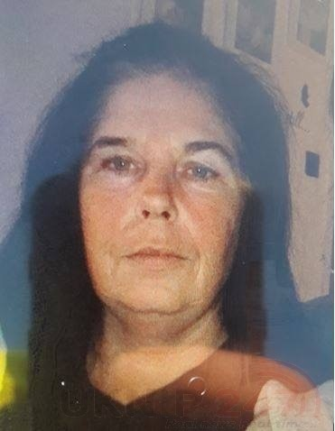 have you seen missing norah collins