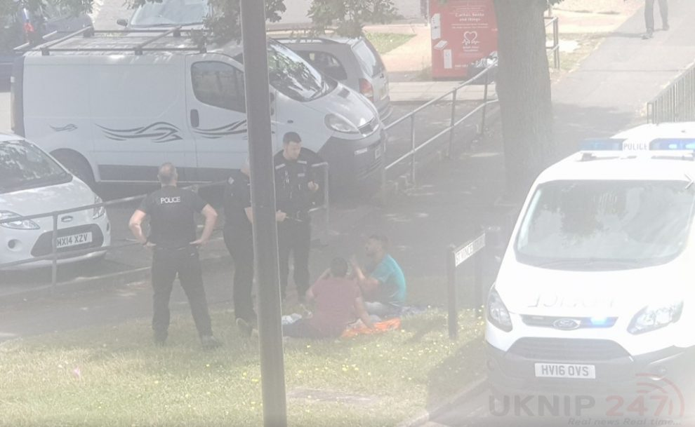 police detain two men in ryde after suspicious activities involving a red van