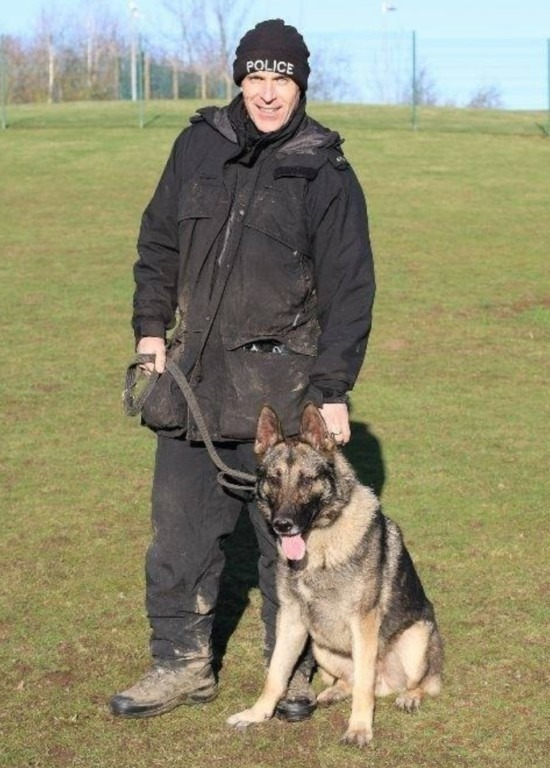 police dog stabbed during incident in hanley