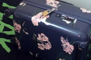 image released of suitcase stolen from woman in canterbury