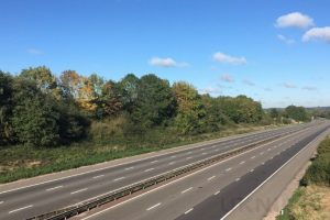 one dead one critical following m40 collision
