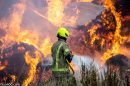 fire trawlers farm dragons green estate 2020 pic by mike burnell 2193