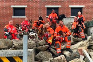 sfrs search dogs